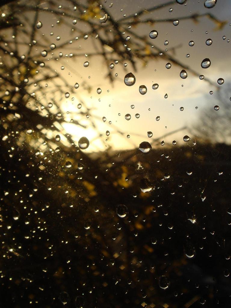 lost coin zen archive rain drops on my window. Black Bedroom Furniture Sets. Home Design Ideas